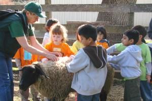 Deer Hollow Farm tours
