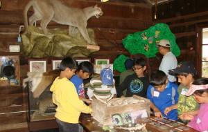 Deer Hollow Farm :: Plan Your Visit - Deer Hollow Farm