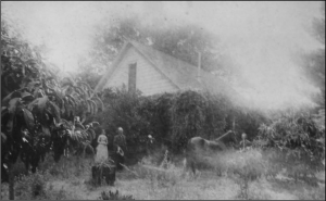 The original Grant Homestead was located near the current Deer Hollow Farmer's home. This photo likely shows Frank Grant and his wife Margaret standing to the left and brother George with the horse on the right. The Grant homestead included a small orchard and a large garden, thought to be located on the site of today's Ohlone Village. The couple planted a Monterey Pine near their home. Today, near the bridge to the current farm house, one can see offspring of that pine.