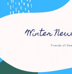winter newsletter 2019