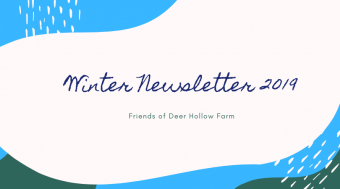 winter newsletter 2019